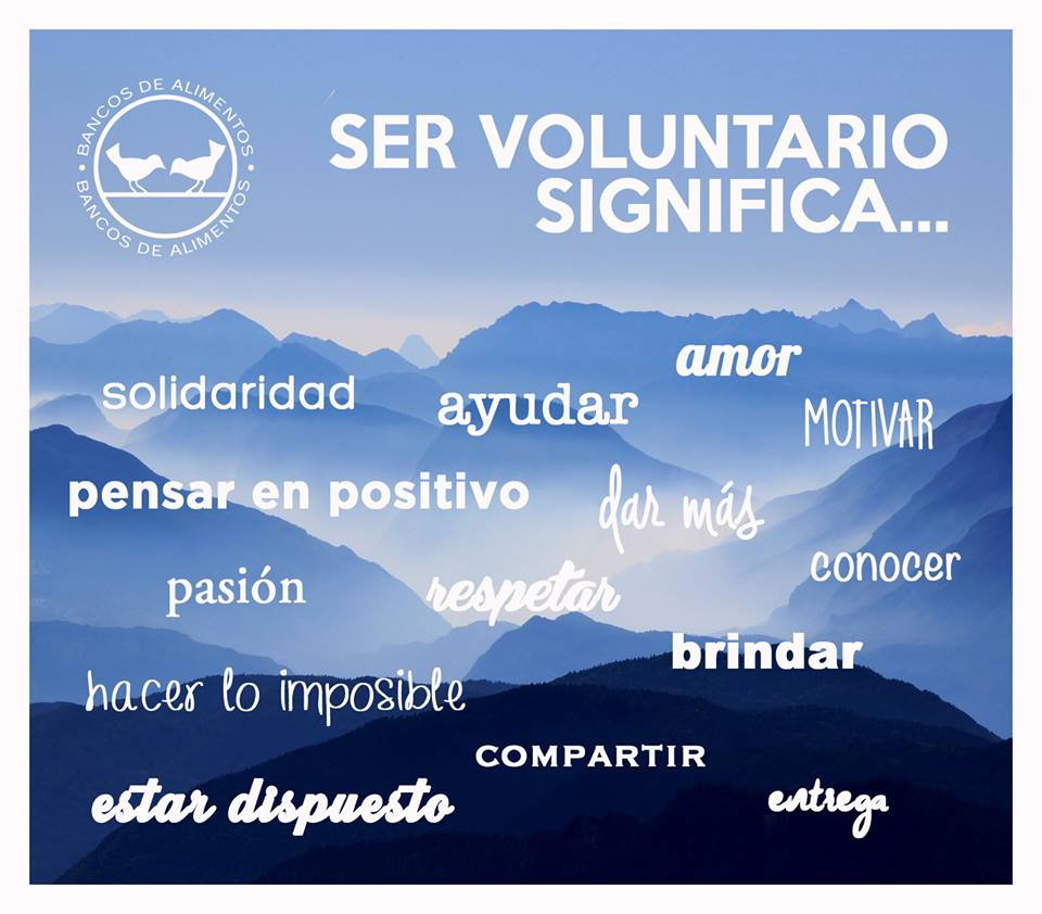 150810_cartel_ser-voluntario-significa